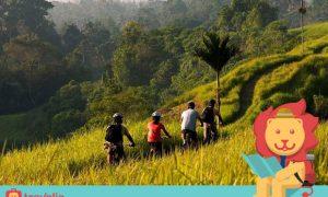 Kamu Bakal Males Pulang Kalau Sudah Melakukan 5 Aktivitas Asyik Ini di Ubud!